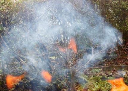 Bits of flames1076